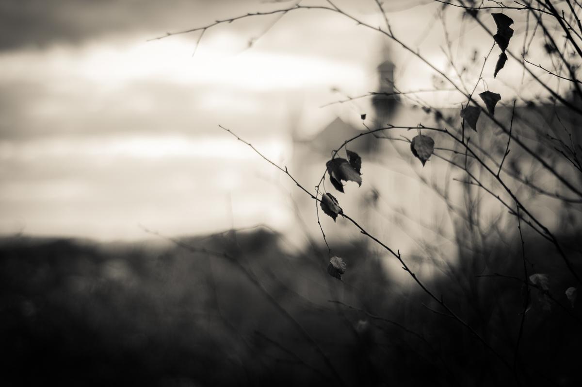 Jesenné snímky 5